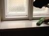 Umývanie okien_ Bratislava